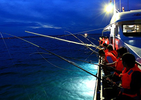 Squid Fishing Tour At Night