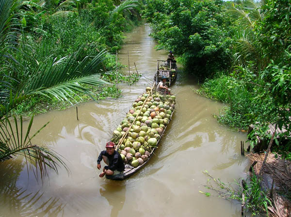 Mekong Delta 1 Day (Cai Be Floating Market - Vinh Long)