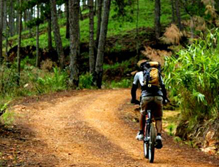 Mountain Biking 1 Day North Of Dalat