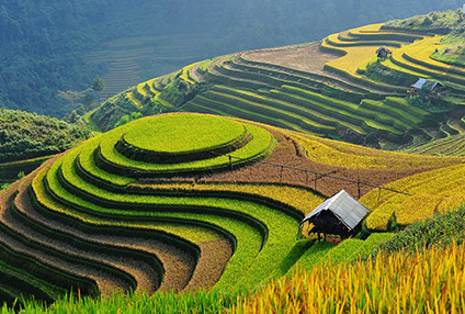 7 Days – Amazing Northern Vietnam Tour